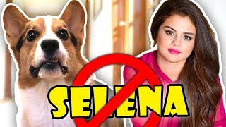 CORGI Disapproves of SELENA GOMEZ || Life After College: Ep. 575