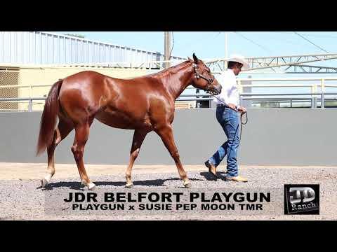 LOTE 31 - JDR Belfort Playgun - 1 LEILÃO SELO DE RAÇA
