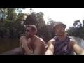 Amazon Rain Forest Medicinal Plants