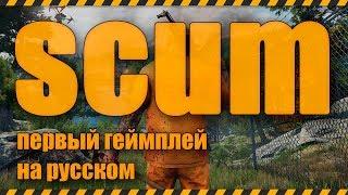 SCUM - первый геймплей на русском - скам gameplay