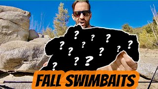 Big Fall Swimbait Bass Hemet Fishing 1st