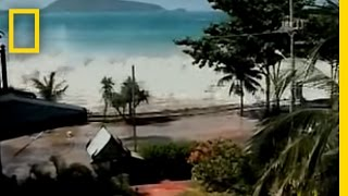 Tsunami 101 | National Geographic