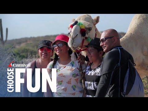 Camel & Mexican Outback Adventure in Cabo San Lucas, Mexico (with audio description)
