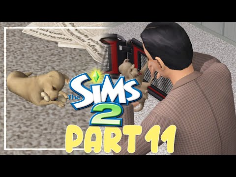 Let's Play The Sims 2: All In One - (Part 11) - Adoption = Vacation!