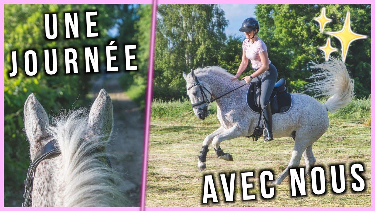 UNE JOURNÉE AUX ÉCURIES AVEC MOI - Mathilde & Sligo