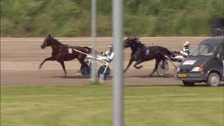 Vidéo de la course PMU PRIX WESTSTELLINGWERF