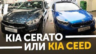 В Питер за машиной! Новый Kia Cerato 2018 или Новый KIA Ceed 2018. Модельный ряд KIA / ТИХИЙ
