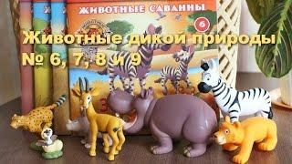 Животные дикой природы № 6, 7, 8 и 9. Журналы и игрушки