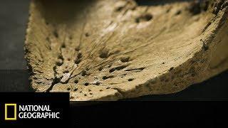 Prehistoryczne cmentarzysko dinozaurów - Wyprawa na Dno