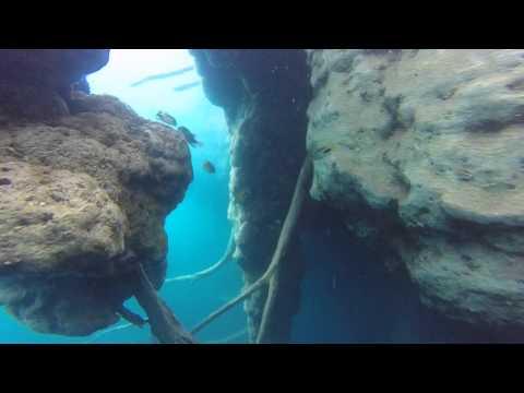 cenote azul bacalar Quintana Roo