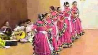 Video DANZAS TIPICAS DE MEXICO download MP3, 3GP, MP4, WEBM, AVI, FLV Agustus 2018