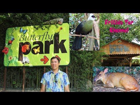 Butterfly Park Empuriabrava 2019 Spain