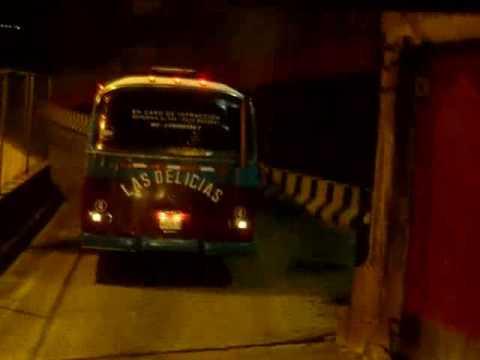 Buses De Venezuela Transportes Las Delicias C.A