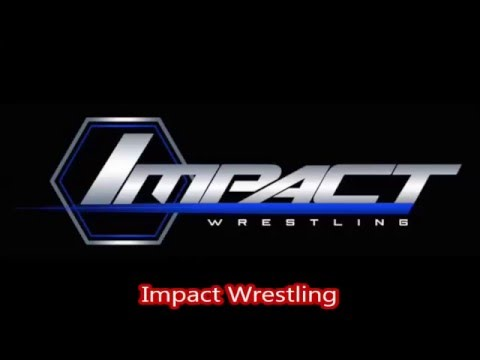 Top 11 Professional Wrestling Companies