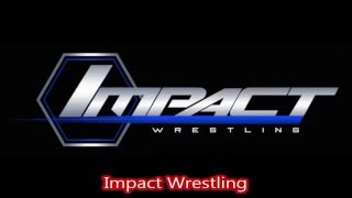 top-11-professional-wrestling-companies