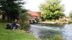 HAMPSHIRE AVON, BRITFORD FISHERY, SALISBURY, WILTSHIRE
