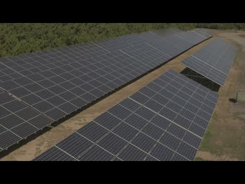 OR hazelnut farm is 1st to fully operate under solar energy