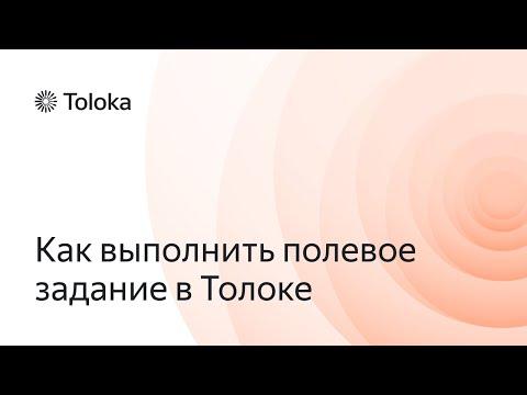 Яндекс.Толока. Как выполнить полевое задание