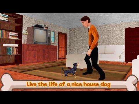 🐶👍Chihuahua Dog Simulator 3D-Симулятор Cобаки Чихуахуа-By WonderAnimals-Android