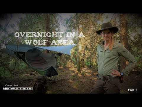 Overnight In A Wolf Area 🐺 Part 2 - Vanessa Blank - 4K