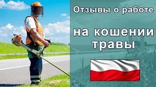 Робота в Польщі на косінні трави - відгуки про компанії АМ Лінгвіста