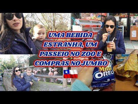 Diário de Viagem Santiago/Chile - Dia 2  CERRO SAN CRISTOBAL, ZOO, COMPRAS NO JUMBO