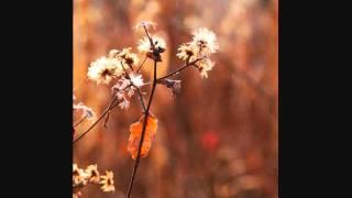 Martin Spence - Love Letters (instrumental)