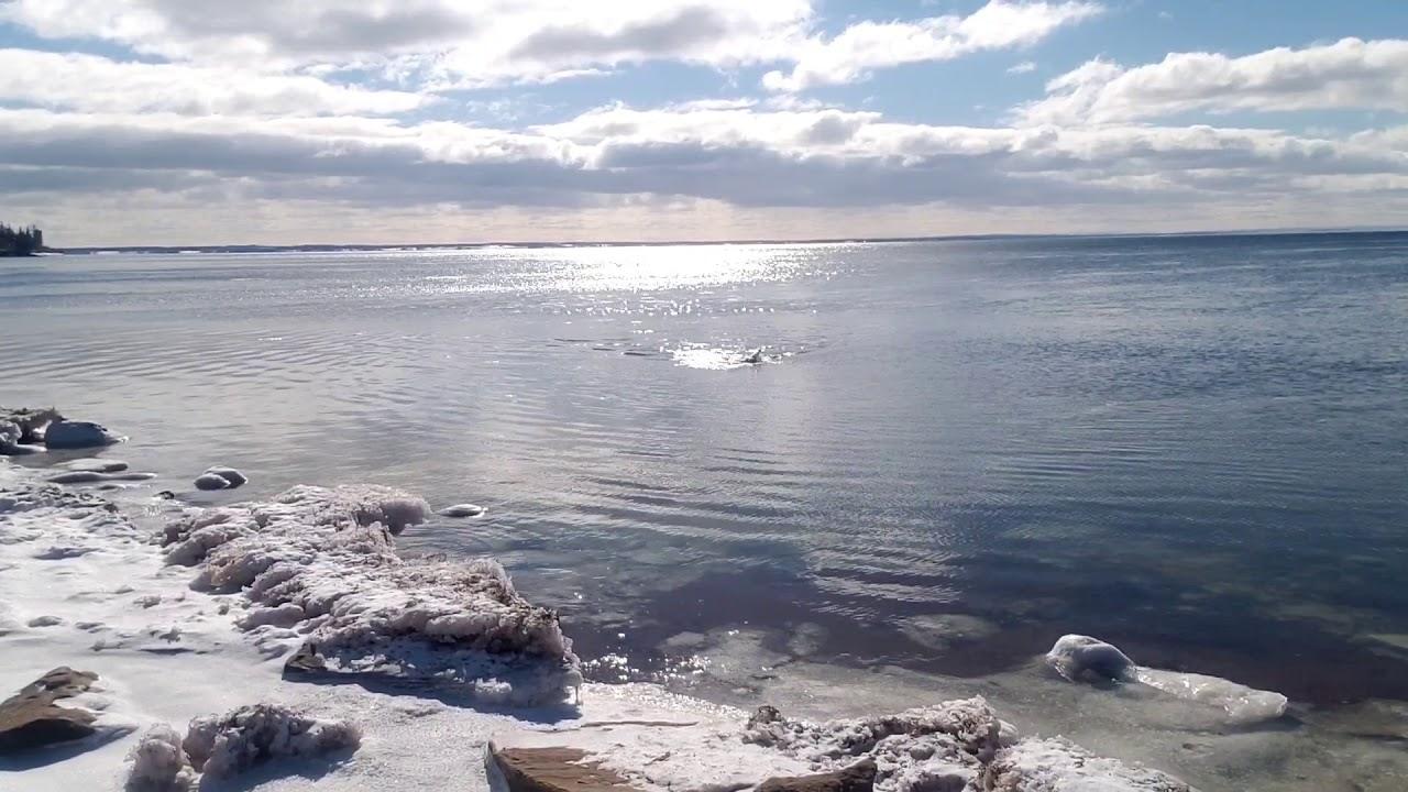 Chilly swim, Baie Verte -2.0C