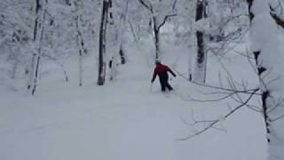 Skiing pow in Algoma Country