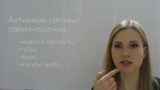 Звуки речи - введение (третья мини-лекция по логопедии)