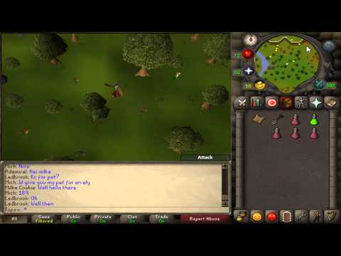 OSRS - C On Game Hoc