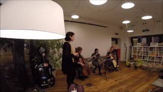Adele - Rolling in the deep ( Nachos band cover) harp flute cello