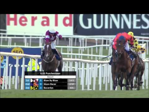 Blow by Blow - 2016 Punchestown Champion Bumper- Race and Reaction