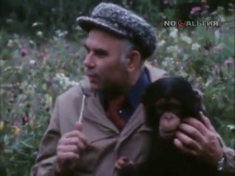 В мире животных. Выпуск 1980 г.