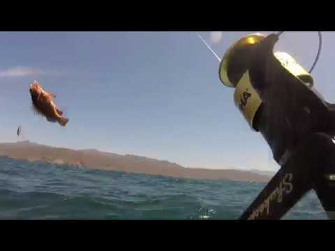 Fishing Baja