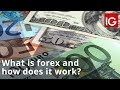 FOREX Explained - YouTube