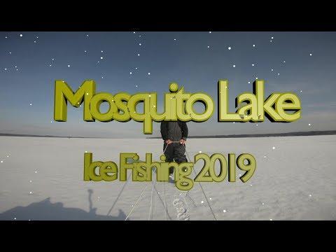 Mosquito Lake Ice Fishing 2019
