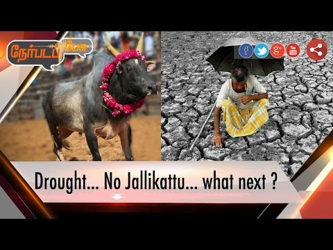 Nerpada Pesu: Drought, Farmers Suicide, Jallikattu Ban & What next in Tamil Nadu ? | 14/01/17