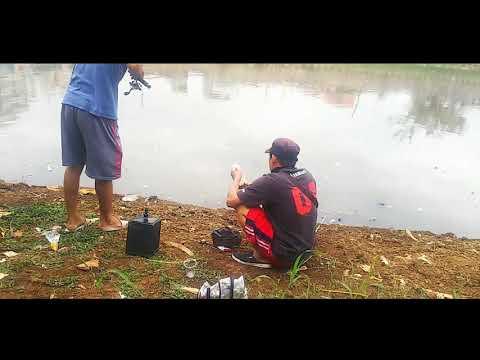 SPOT MANCING LIAR DI JAKARTA - YouTube