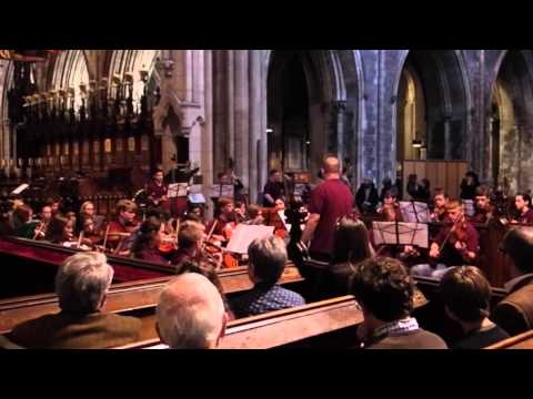 Dobyns-Bennett Orchestra St. Patrick's Cathedral Performance