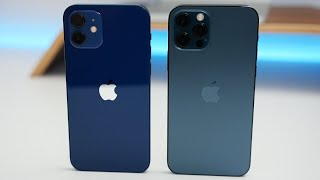 iPhone 12 vs iPhone 12 Pro - Which Should You Choose?