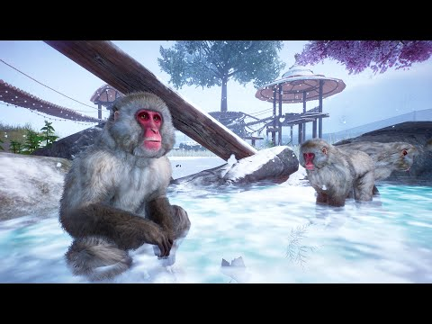 PLANET ZOO Japanese Macaque - Arctic Research Park  