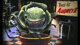 Watch Little Shop Of Horrors Mean Green Mother From Outer Space video