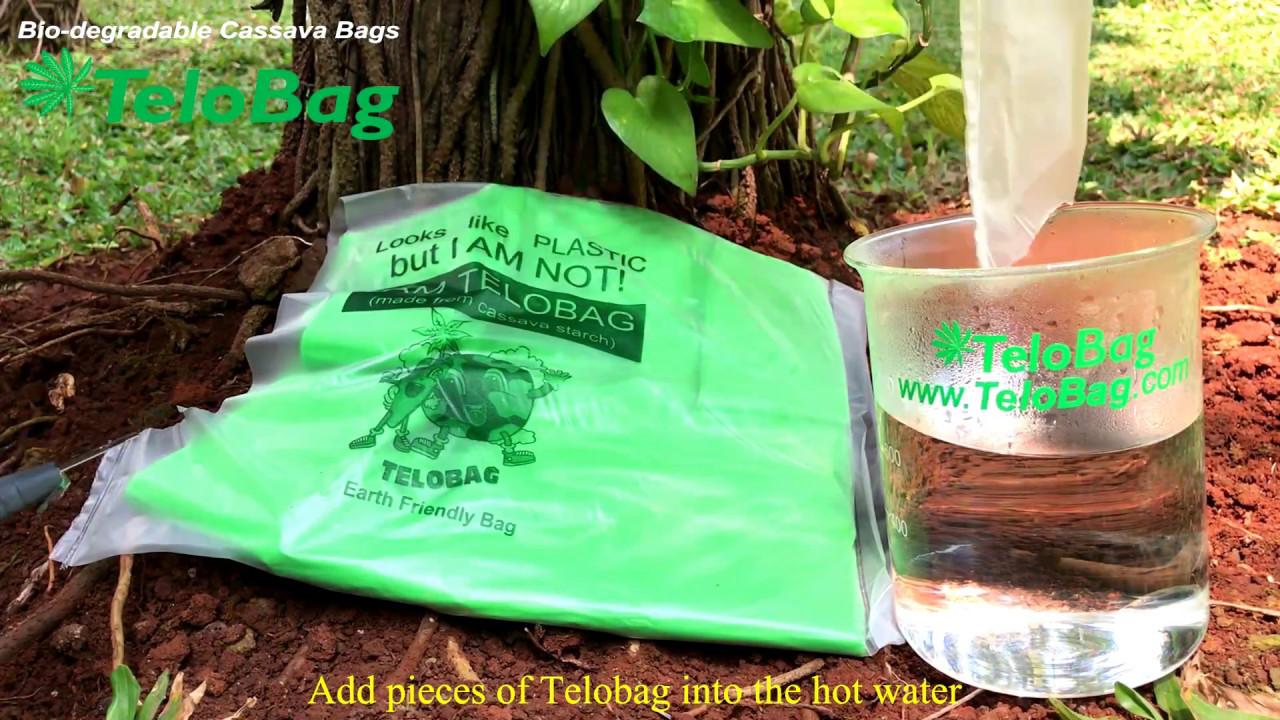 cassava biodegradable plastic