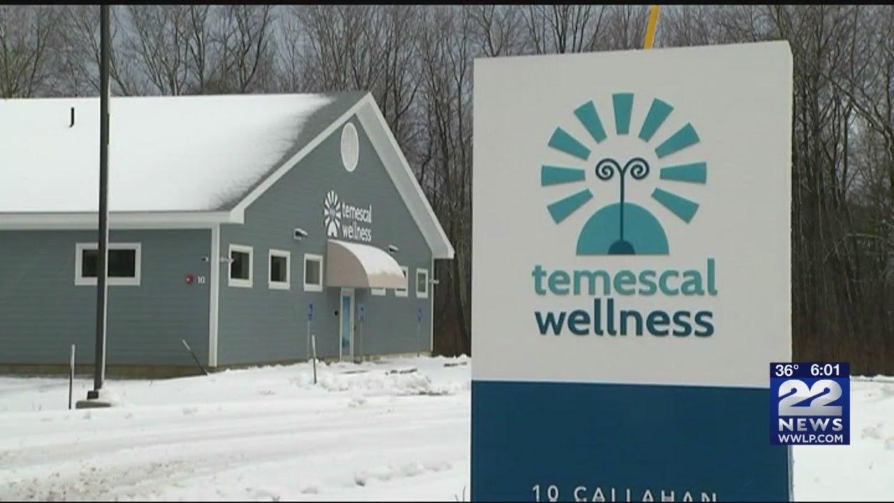 Recreational Marijuana Shops to open in Berkshire County