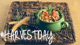 Recipe: This #HarvestDay Oldie Is A Perfect Summertime Goodie  #HarvestDay  Oprah Winfrey Network