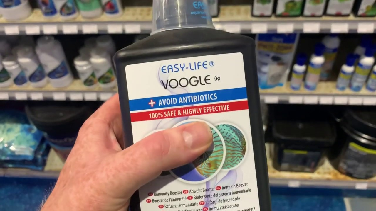 I Use Voogle In My Quarantine Tanks And For Stressed Fish Youtube Are you a googler and want. i use voogle in my quarantine tanks and for stressed fish