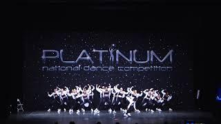 Platinum Power - Mobile, AL 2019