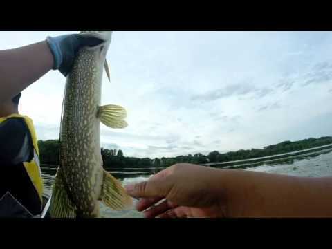 First Video - Bass Fishing On A Lake In The Metro Area Of MN