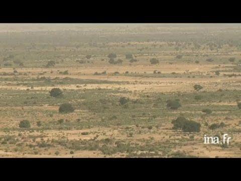 Mali : ville de Djenné